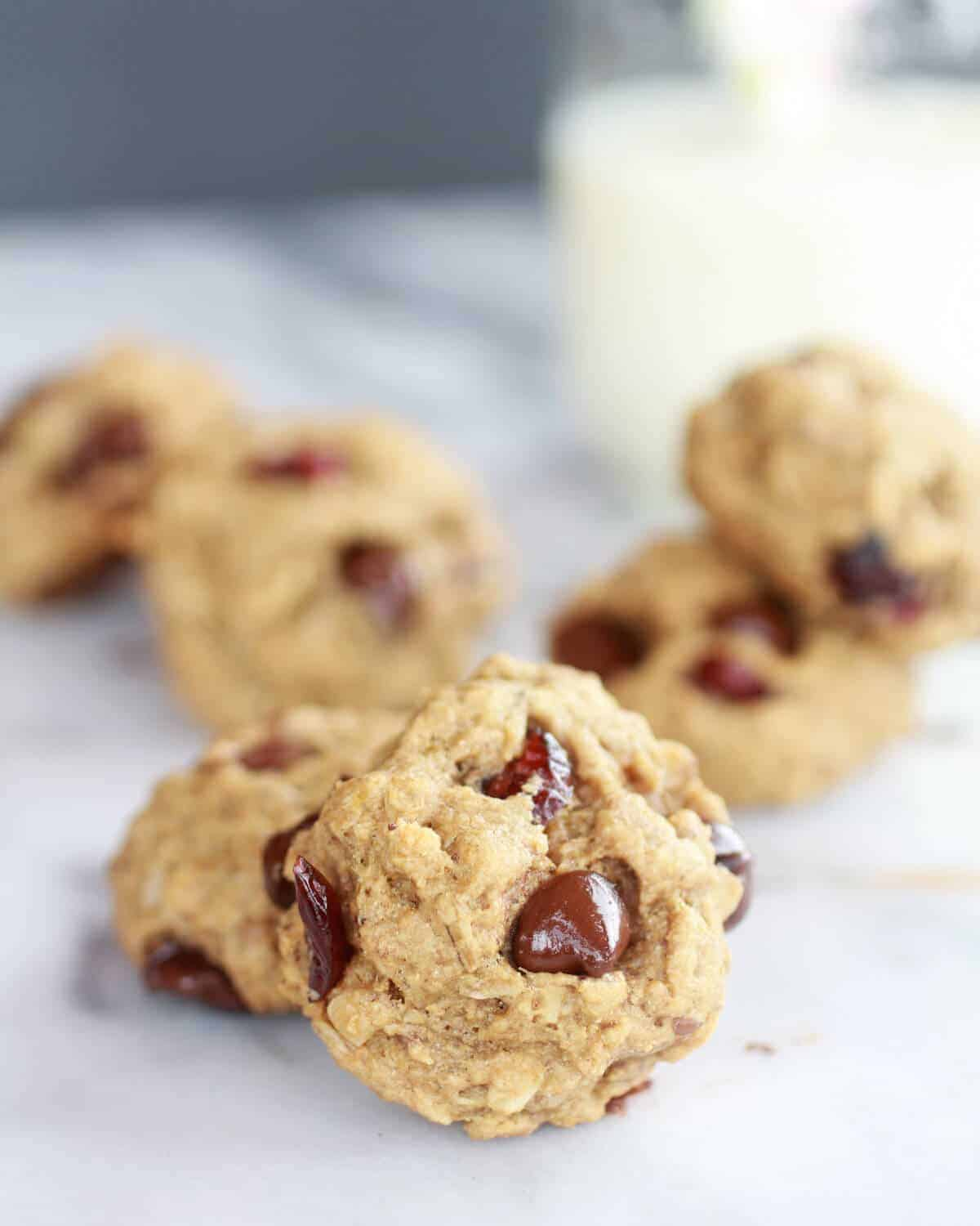Super Healthy Breakfast (or anytime) Cookies-6