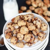Oatmeal Chocolate Chip Cookie Cereal-1