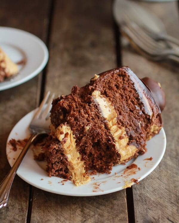 Ultimate Triple Layer Chocolate Bourbon Peanut Butter Buckeye Cake | halfbakedharvest.com