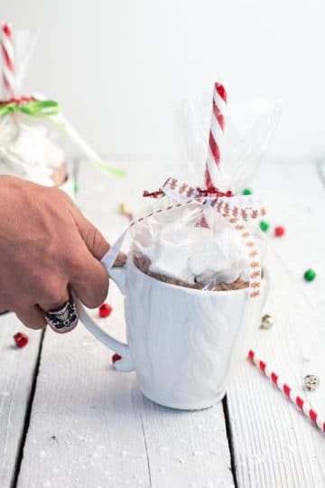 Homemade Holiday Gifts: Easy Double Chocolate Vanilla Bean Hot Cocoa Mugs + Marshmallows