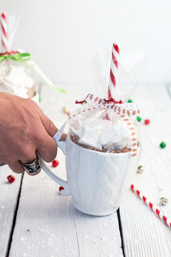 Homemade Holiday Gifts- Easy Double Chocolate Vanilla Bean Hot Cocoa Mugs + Marshmallows-9