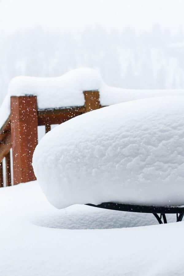 Snow | halfbakedharvest.com