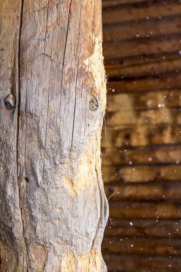 The Barn: Before | halfbakedharvest.com