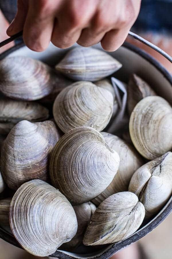 Fresh clam and pasta recipes