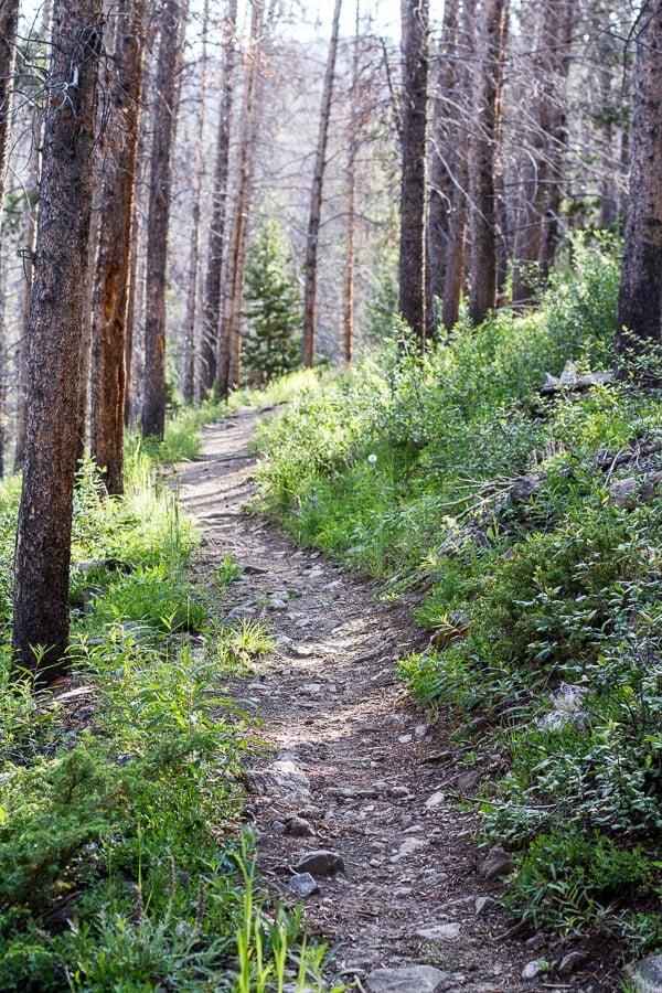 Let's Go on Mid Summer Hike Together | halfbakedharvest.com