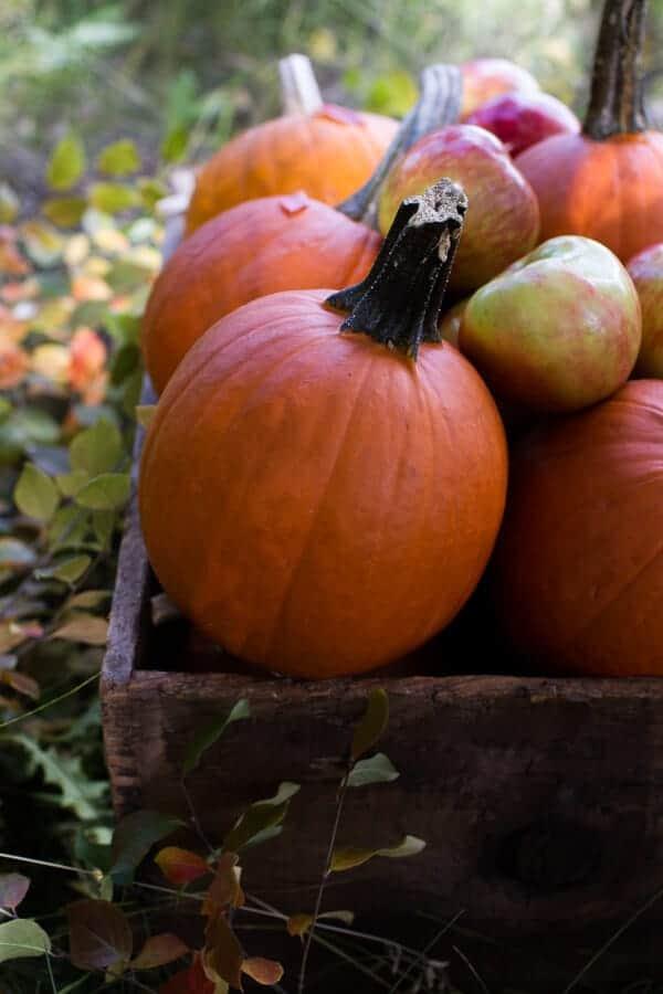 Brown Butter Pecan + Maple Quinoa Autumn Harvest Granola | halfbakedharvest.com @hbharvest