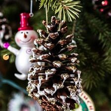 Homemade Holidays: Snowy, Sparkly Pine Cone Ornaments.