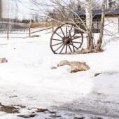 The Barn…Progress Photos-1