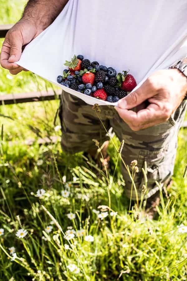 Summer Berries | halfbakedharvest @hbharest