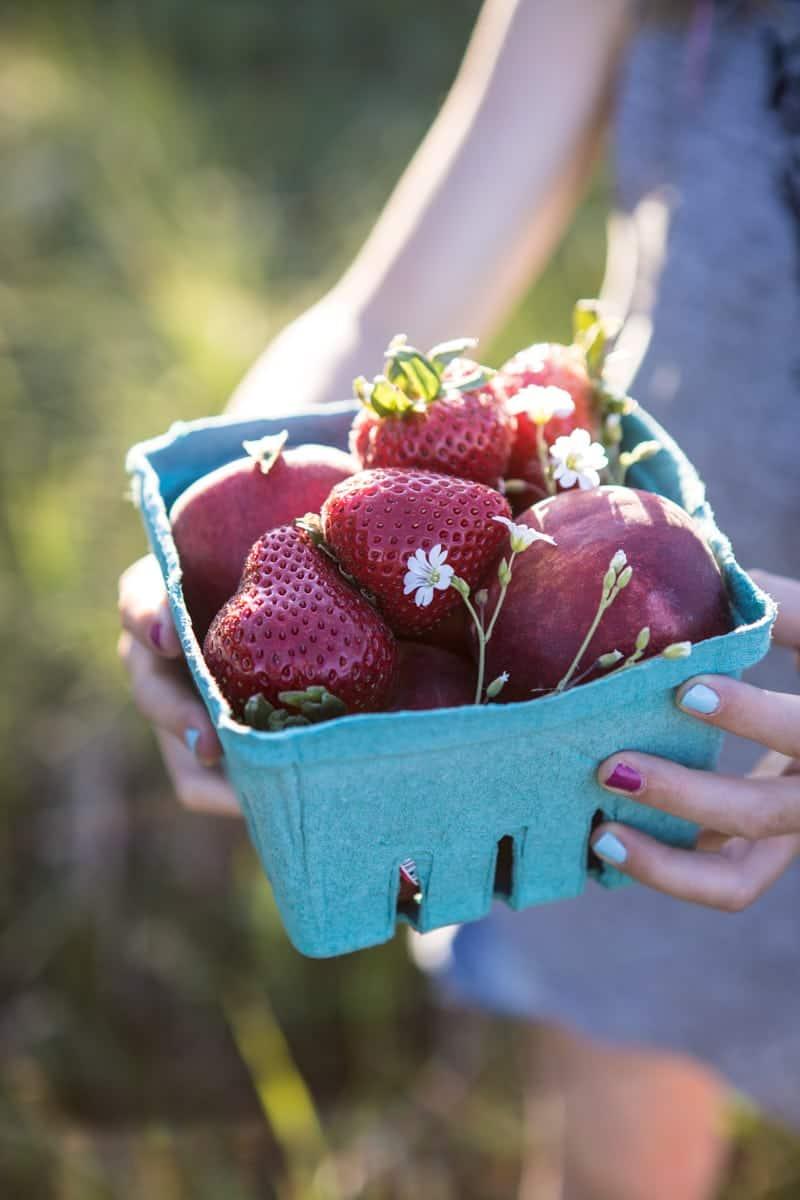 Honey Strawberry Apricot Tart | halfbakedharvest.com @hbharvest