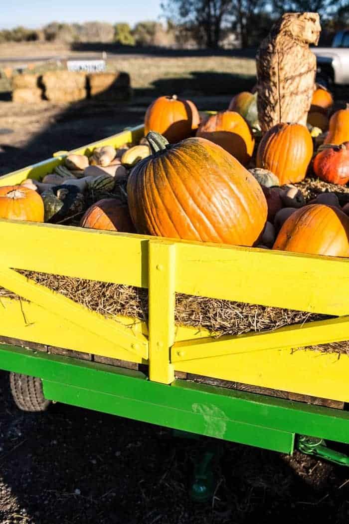 Nine Favorite Things | halfbakedharvest.com @hbharvest
